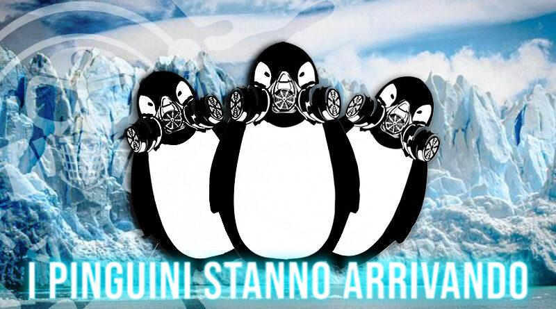 galactika ice penguin series Galactika Ice Penguin Series Aroma 20 ml I Pinguini di Galactika pinguini800 800x445
